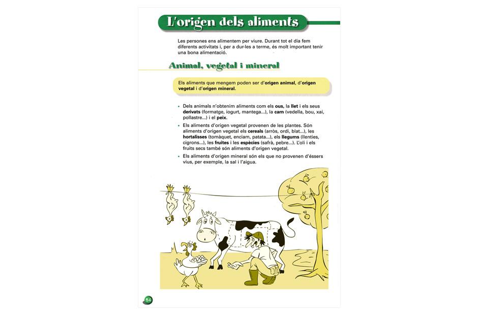 Ilustração: Caneta/Vetorizadas